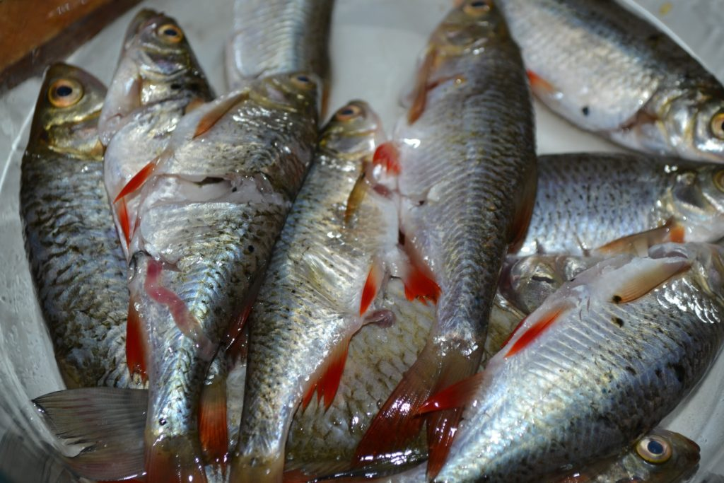 Рецепт ухи из речной рыбы - Шаг 3