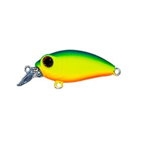 на что хорошо клюет рыба в павлодаре